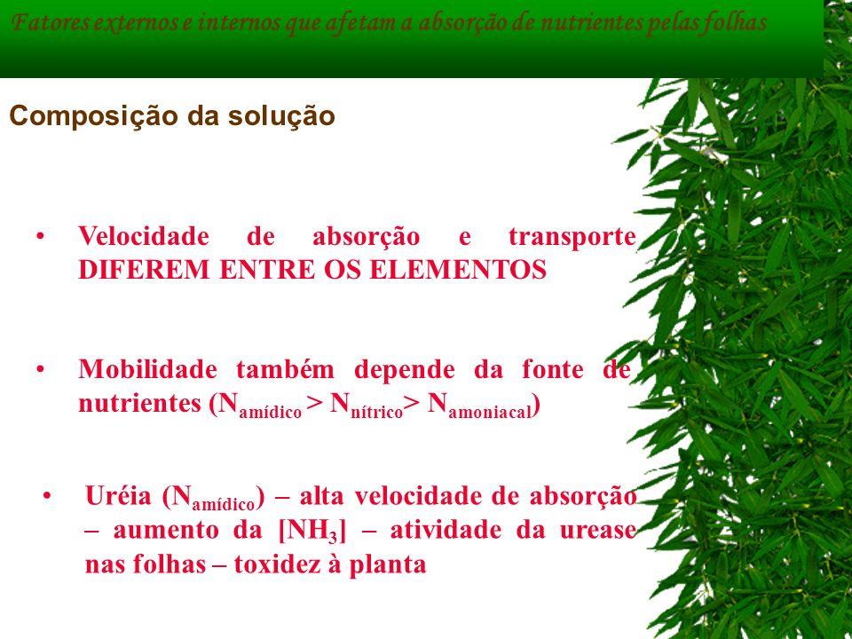 Fatores externos e internos que afetam a absorção de nutrientes pelas folhas Composição da solução Velocidade de absorção e transporte DIFEREM ENTRE O