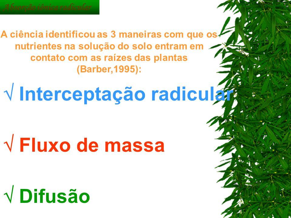 Interceptação radicular Fluxo de massa Difusão A ciência identificou as 3 maneiras com que os nutrientes na solução do solo entram em contato com as r