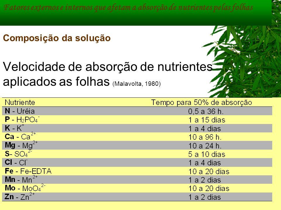 Velocidade de absorção de nutrientes aplicados as folhas (Malavolta, 1980) Fatores externos e internos que afetam a absorção de nutrientes pelas folha