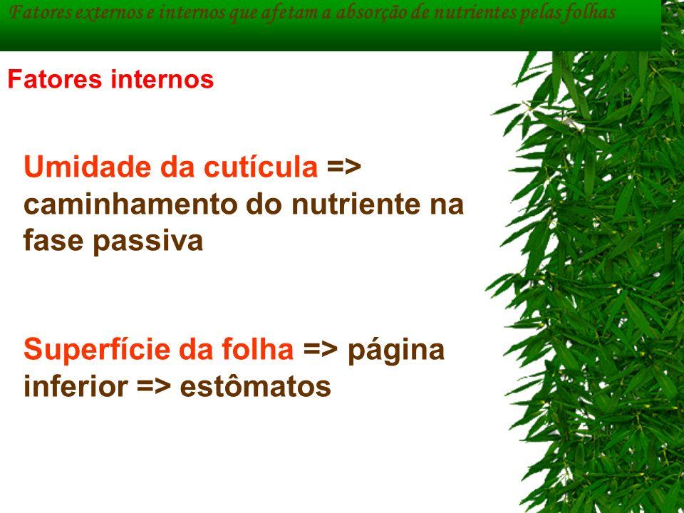 Fatores externos e internos que afetam a absorção de nutrientes pelas folhas Umidade da cutícula => caminhamento do nutriente na fase passiva Superfíc