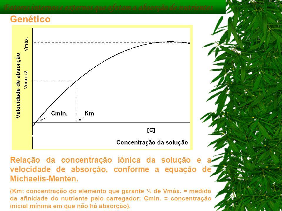 Fatores internos e externos que afetam a absorção de nutrientes Genético Relação da concentração iônica da solução e a velocidade de absorção, conform