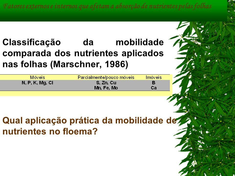 Classificação da mobilidade comparada dos nutrientes aplicados nas folhas (Marschner, 1986) Fatores externos e internos que afetam a absorção de nutri