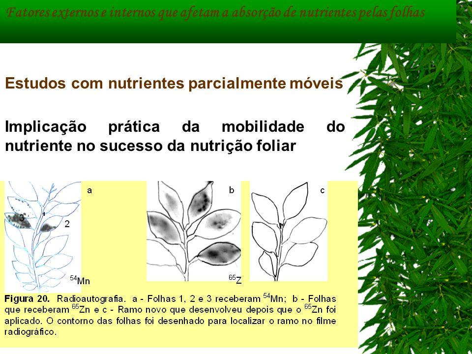 Implicação prática da mobilidade do nutriente no sucesso da nutrição foliar Fatores externos e internos que afetam a absorção de nutrientes pelas folh