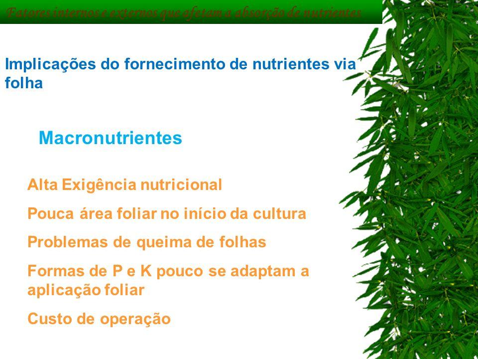 Fatores internos e externos que afetam a absorção de nutrientes Implicações do fornecimento de nutrientes via folha Macronutrientes Alta Exigência nut