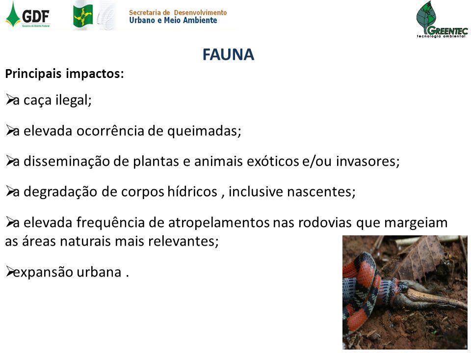 FAUNA Principais impactos: a caça ilegal; a elevada ocorrência de queimadas; a disseminação de plantas e animais exóticos e/ou invasores; a degradação