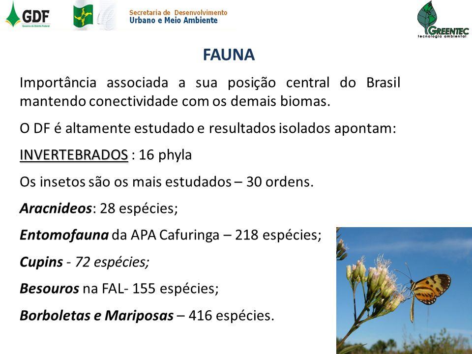 FAUNA Importância associada a sua posição central do Brasil mantendo conectividade com os demais biomas. O DF é altamente estudado e resultados isolad