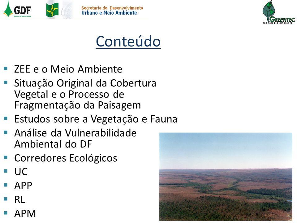 Conteúdo ZEE e o Meio Ambiente Situação Original da Cobertura Vegetal e o Processo de Fragmentação da Paisagem Estudos sobre a Vegetação e Fauna Análi