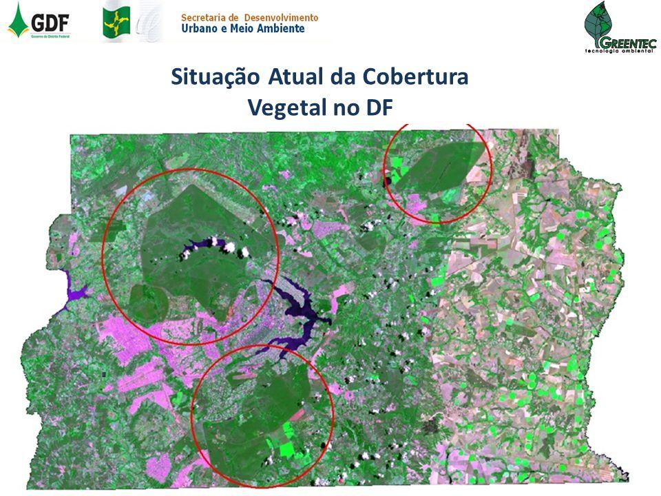 IBGE (2006)