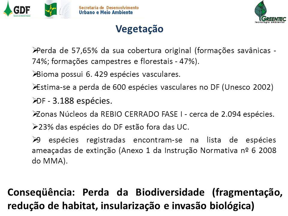 Vegetação Perda de 57,65% da sua cobertura original (formações savânicas - 74%; formações campestres e florestais - 47%). Bioma possui 6. 429 espécies