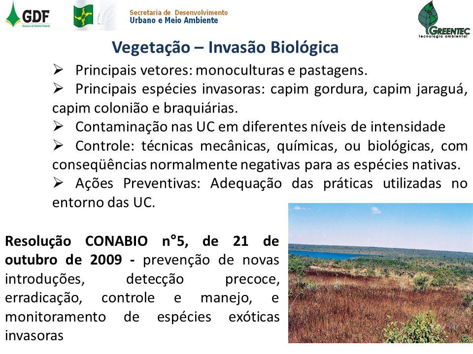 Vegetação – Invasão Biológica Principais vetores: monoculturas e pastagens. Principais espécies invasoras: capim gordura, capim jaraguá, capim coloniã