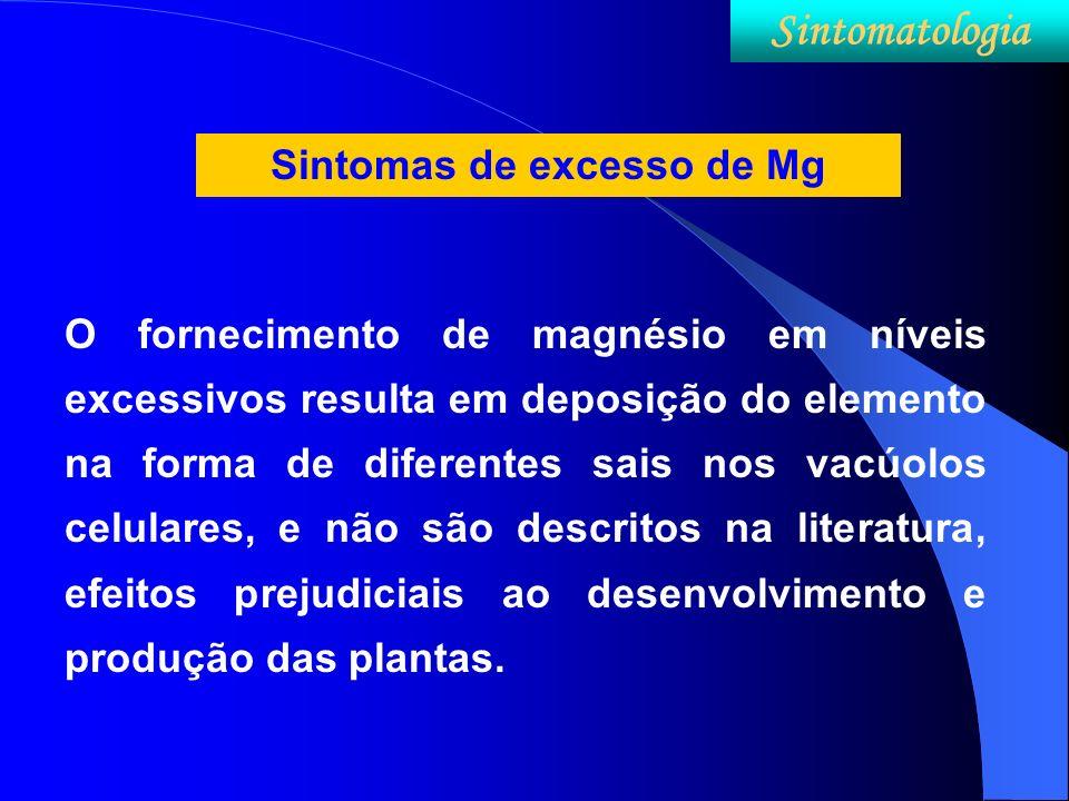 Sintomas de excesso de Mg O fornecimento de magnésio em níveis excessivos resulta em deposição do elemento na forma de diferentes sais nos vacúolos ce