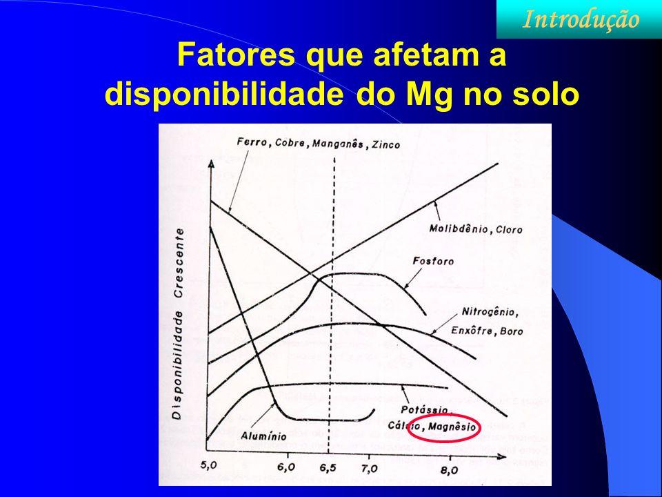 Fatores que afetam a disponibilidade do Mg no solo Introdução