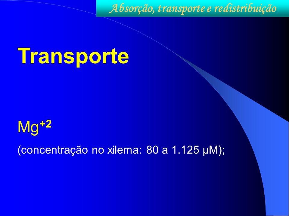 Transporte Mg +2 (concentração no xilema: 80 a 1.125 µM); Absorção, transporte e redistribuição