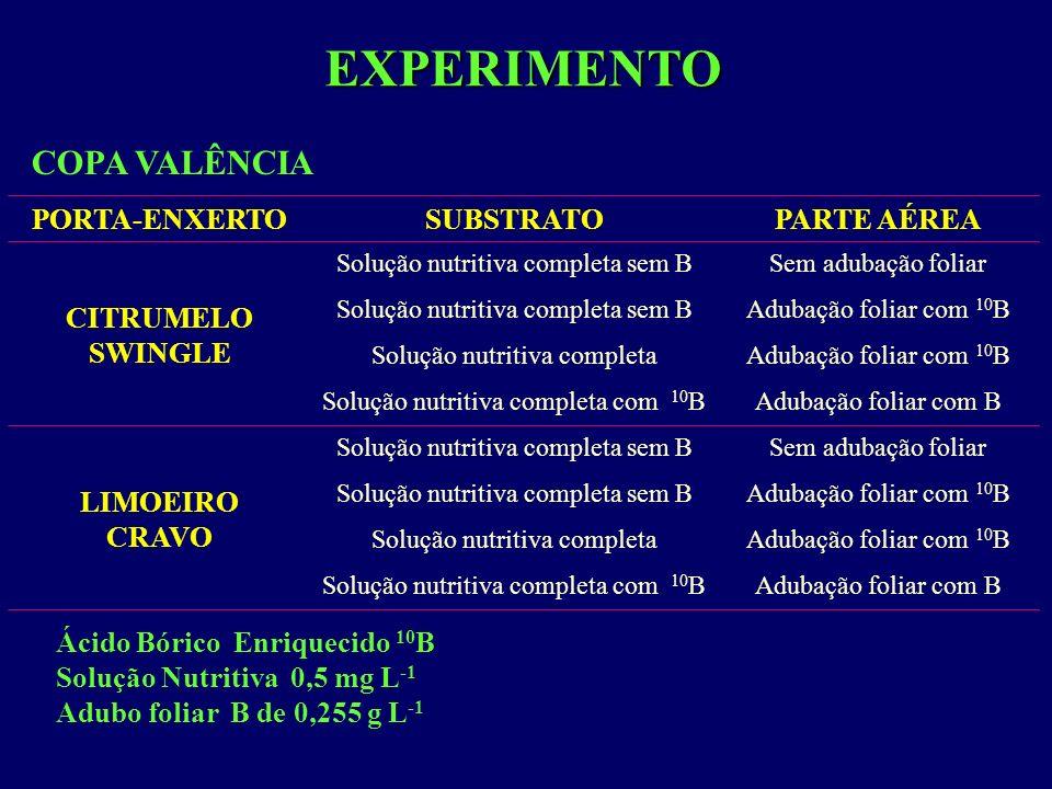 EXPERIMENTO PORTA-ENXERTOSUBSTRATOPARTE AÉREA CITRUMELO SWINGLE Solução nutritiva completa sem BSem adubação foliar Solução nutritiva completa sem BAd