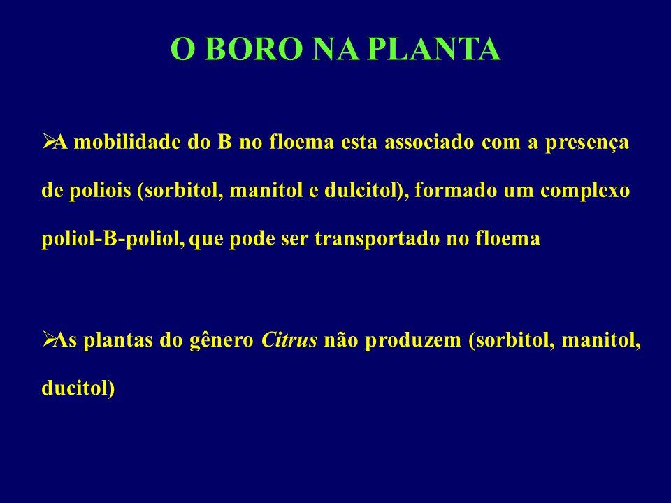O BORO NA PLANTA A mobilidade do B no floema esta associado com a presença de poliois (sorbitol, manitol e dulcitol), formado um complexo poliol-B-pol
