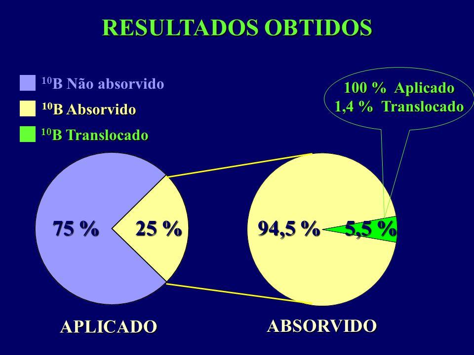 25 % 75 % 5,5 % 94,5 % RESULTADOS OBTIDOS APLICADO ABSORVIDO 100 % Aplicado 1,4 % Translocado 10 B Não absorvido 10 B Absorvido 10 B Translocado