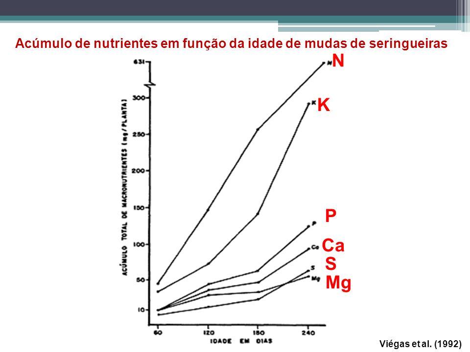 Viégas et al. (1992) Acúmulo de nutrientes em função da idade de mudas de seringueiras N K P Ca S Mg