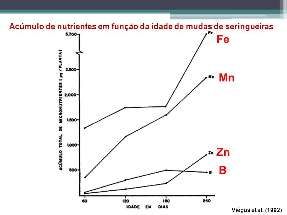 Viégas et al. (1992) Acúmulo de nutrientes em função da idade de mudas de seringueiras Fe Mn Zn B