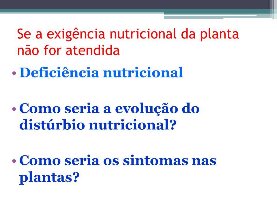 Se a exigência nutricional da planta não for atendida Deficiência nutricional Como seria a evolução do distúrbio nutricional? Como seria os sintomas n