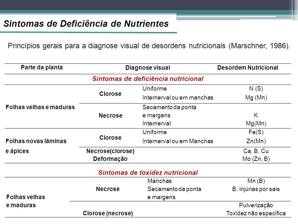 Parte da planta Diagnose visualDesordem Nutricional Sintomas de deficiência nutricional Clorose UniformeN (S) Internerval ou em manchasMg (Mn) Folhas velhas e maduras Necrose Secamento da ponta e margensK InternervalMg(Mn) Clorose UniformeFe(S) Folhas novas lâminasInternerval ou em ManchasZn(Mn) e ápicesNecrose(clorose)Ca, B, Cu DeformaçãoMo (Zn, B) Sintomas de toxidez nutricional Necrose ManchasMn (B) Folhas velhas Secamento da ponta e margens B, injúrias por sais e madurasPulverização Clorose (necrose)Toxidez não específica Princípios gerais para a diagnose visual de desordens nutricionais (Marschner, 1986).