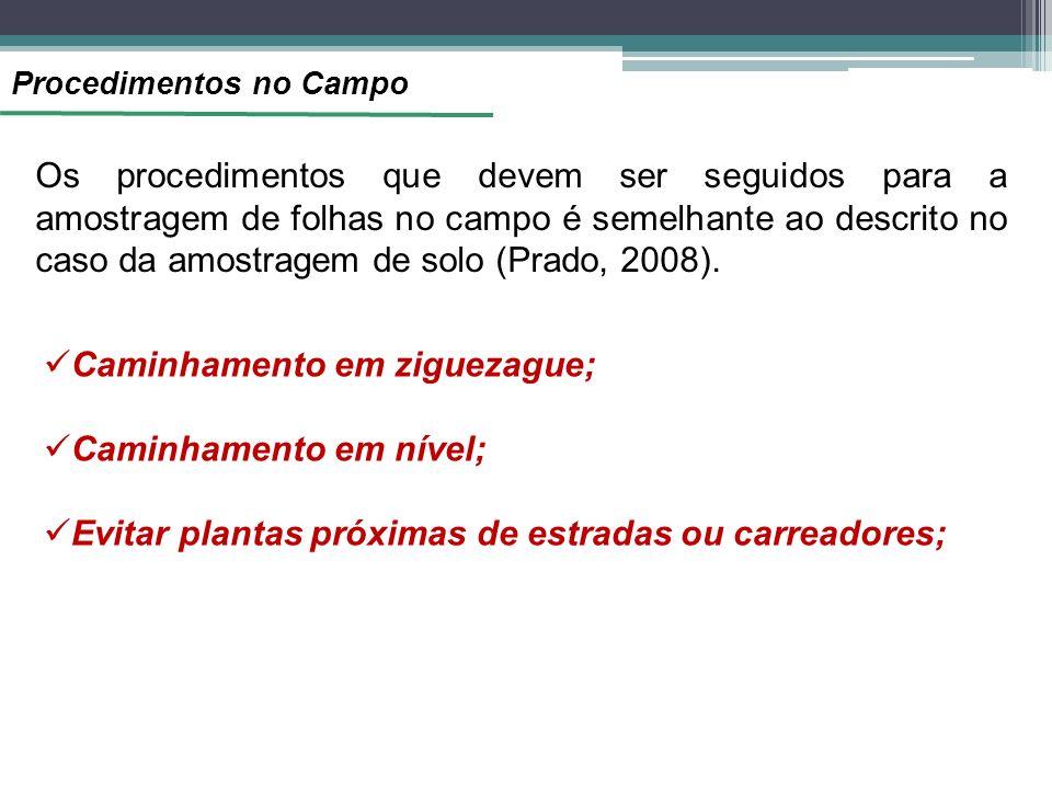 Procedimentos no Campo Os procedimentos que devem ser seguidos para a amostragem de folhas no campo é semelhante ao descrito no caso da amostragem de