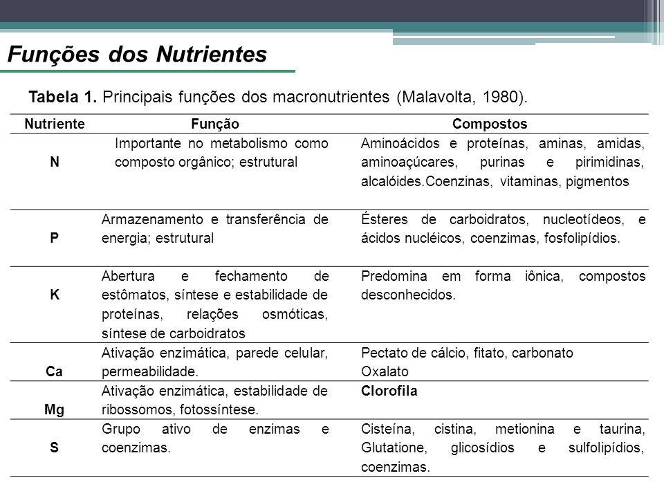 Funções dos Nutrientes NutrienteFunçãoCompostos N Importante no metabolismo como composto orgânico; estrutural Aminoácidos e proteínas, aminas, amidas, aminoaçúcares, purinas e pirimidinas, alcalóides.Coenzinas, vitaminas, pigmentos P Armazenamento e transferência de energia; estrutural Ésteres de carboidratos, nucleotídeos, e ácidos nucléicos, coenzimas, fosfolipídios.
