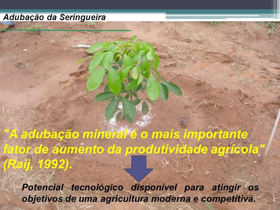Adubação da Seringueira A adubação mineral é o mais importante fator de aumento da produtividade agrícola (Raij, 1992).