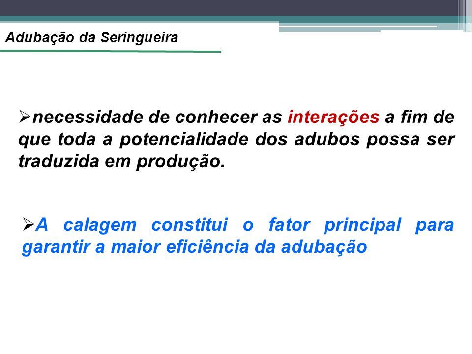 Adubação da Seringueira necessidade de conhecer as interações a fim de que toda a potencialidade dos adubos possa ser traduzida em produção. A calagem