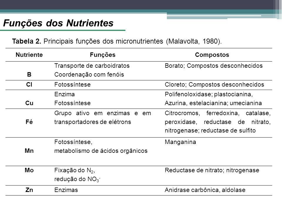 Funções dos Nutrientes Tabela 2. Principais funções dos micronutrientes (Malavolta, 1980). NutrienteFunçõesCompostos B Transporte de carboidratos Coor