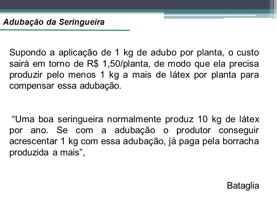 Adubação da Seringueira Supondo a aplicação de 1 kg de adubo por planta, o custo sairá em torno de R$ 1,50/planta, de modo que ela precisa produzir pelo menos 1 kg a mais de látex por planta para compensar essa adubação.
