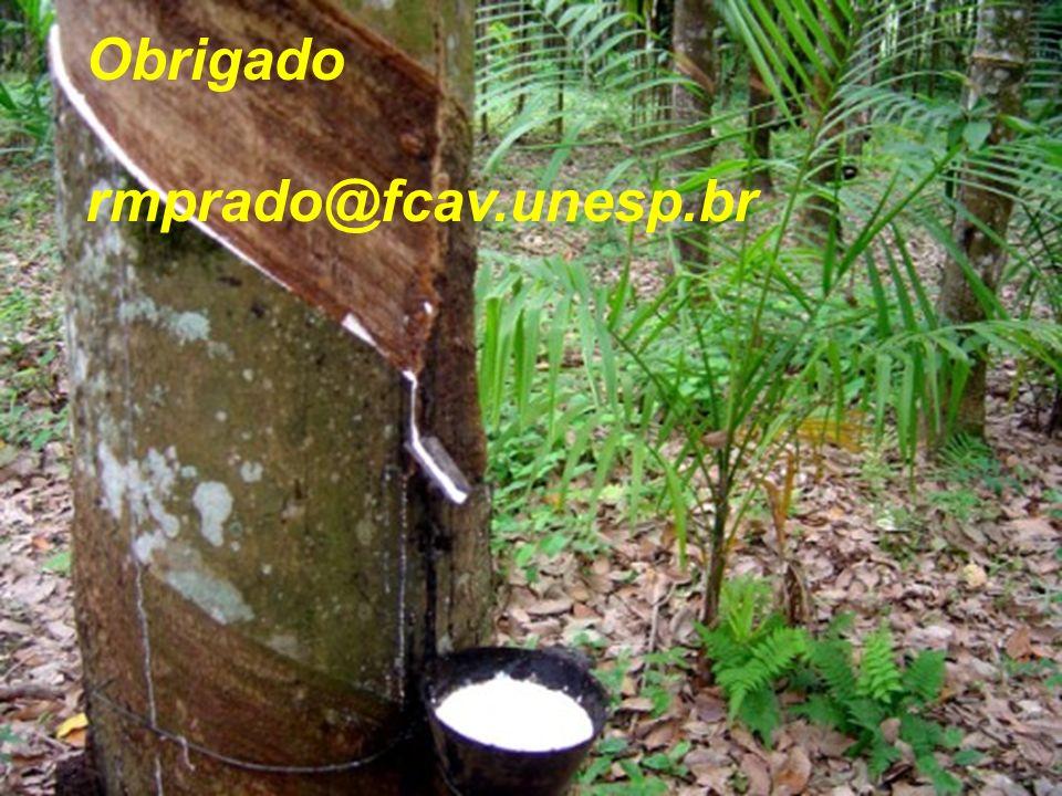Obrigado rmprado@fcav.unesp.br