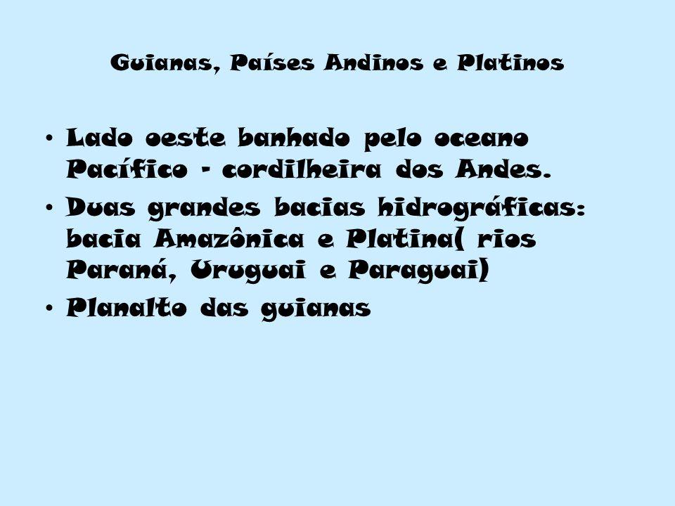 Guianas, Países Andinos e Platinos Lado oeste banhado pelo oceano Pacífico – cordilheira dos Andes. Duas grandes bacias hidrográficas: bacia Amazônica