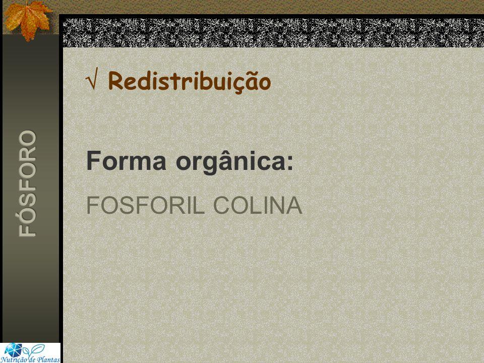 Redistribuição Forma orgânica: FOSFORIL COLINA