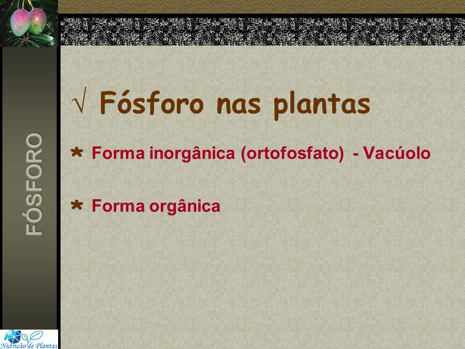 Fósforo nas plantas * Forma inorgânica (ortofosfato) - Vacúolo * Forma orgânica