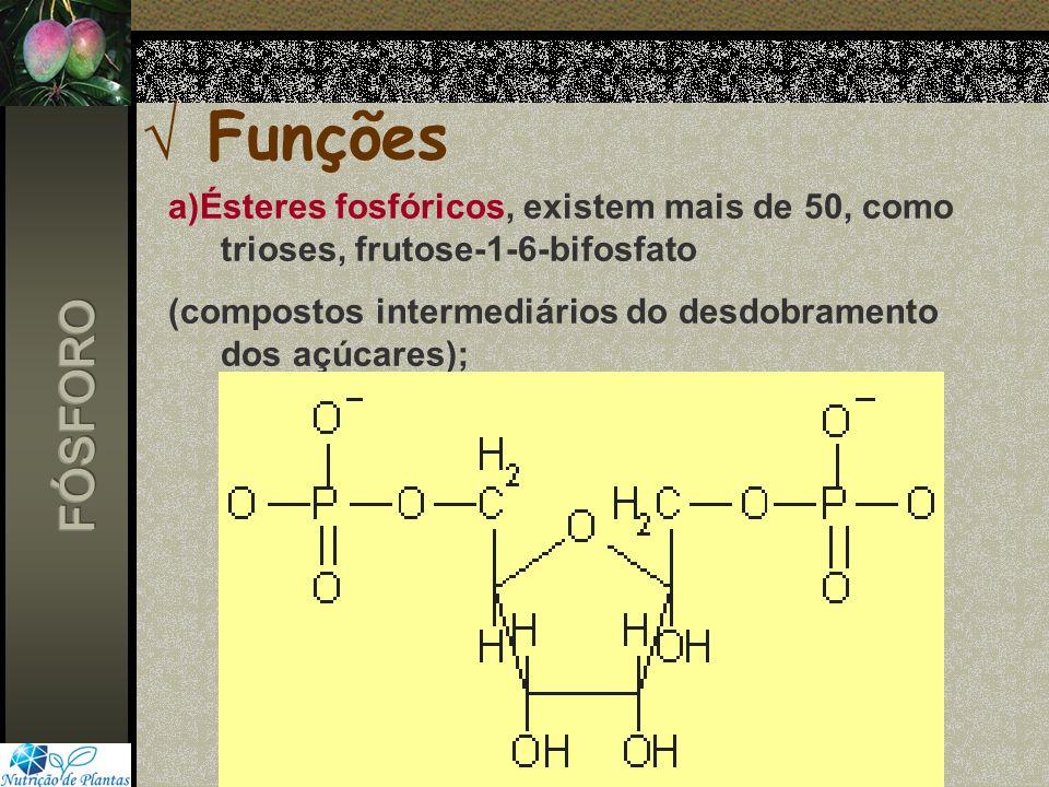 Funções a)Ésteres fosfóricos, existem mais de 50, como trioses, frutose-1-6-bifosfato (compostos intermediários do desdobramento dos açúcares);