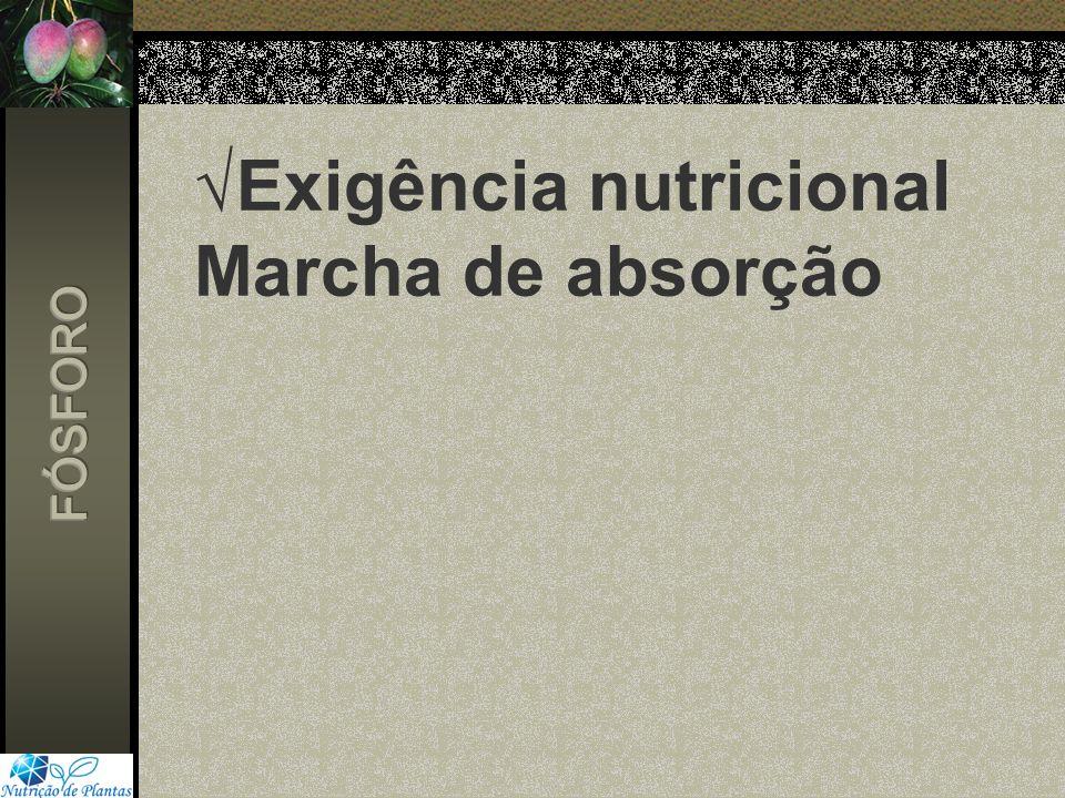 Exigência nutricional Marcha de absorção