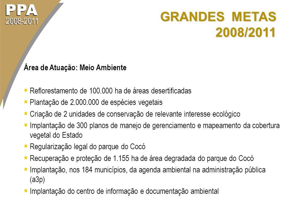 GRANDES METAS 2008/2011 Área de Atuação: Meio Ambiente Reflorestamento de 100.000 ha de áreas desertificadas Plantação de 2.000.000 de espécies vegeta
