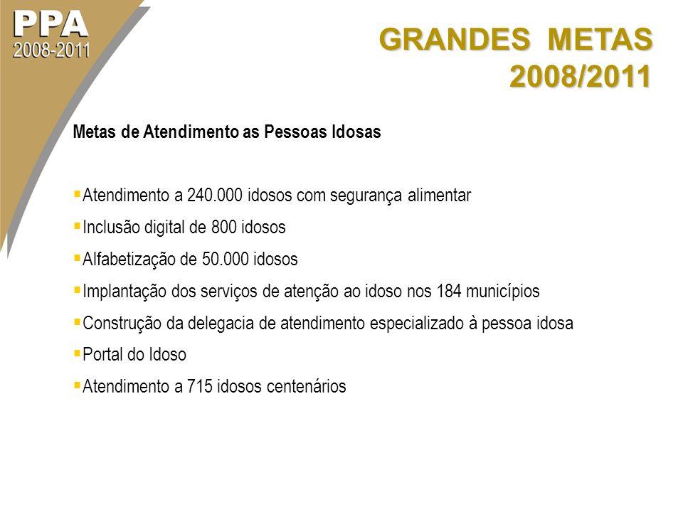 GRANDES METAS 2008/2011 Metas de Atendimento as Pessoas Idosas Atendimento a 240.000 idosos com segurança alimentar Inclusão digital de 800 idosos Alf