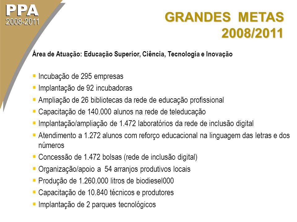 GRANDES METAS 2008/2011 Área de Atuação: Educação Superior, Ciência, Tecnologia e Inovação Incubação de 295 empresas Implantação de 92 incubadoras Amp