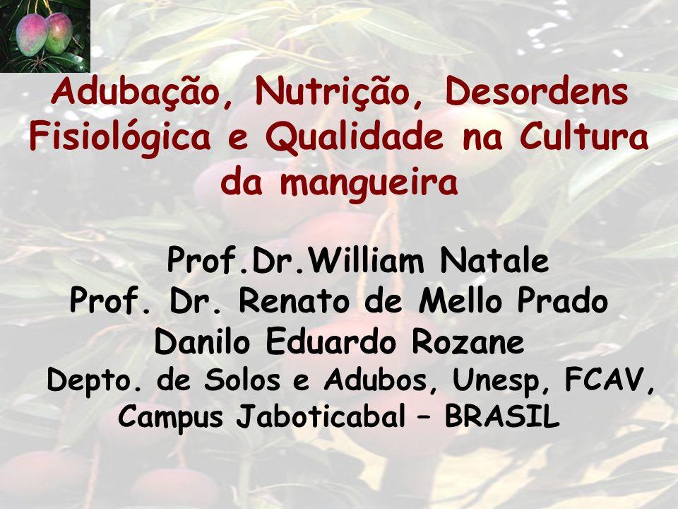 Adubação, Nutrição, Desordens Fisiológica e Qualidade na Cultura da mangueira Prof.Dr.William Natale Prof. Dr. Renato de Mello Prado Danilo Eduardo Ro