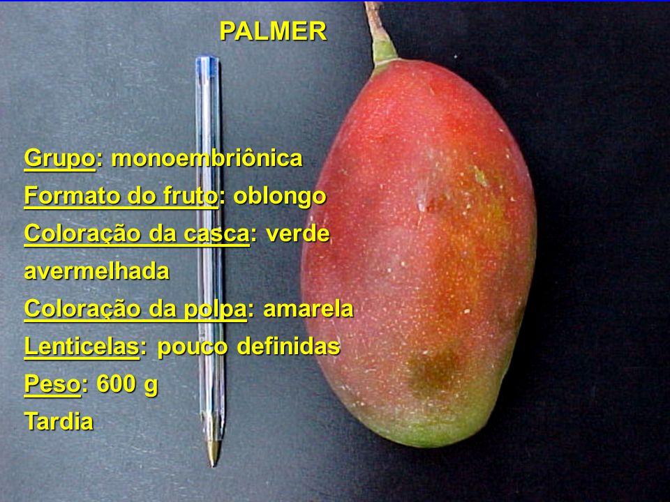 Grupo: monoembriônica Formato do fruto: oblongo Coloração da casca: verde avermelhada Coloração da polpa: amarela Lenticelas: pouco definidas Peso: 60