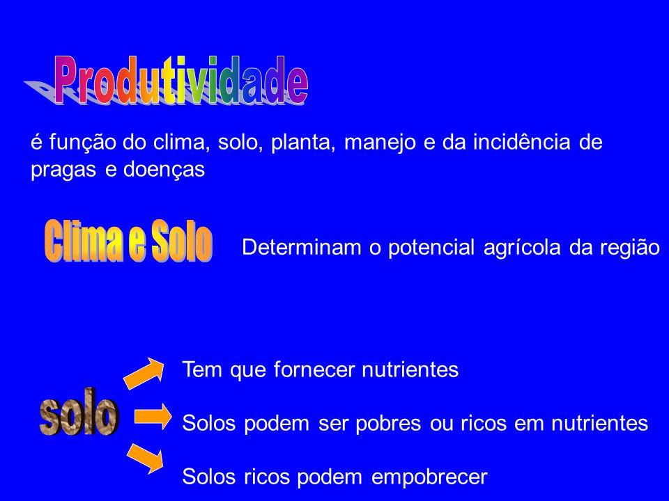 é função do clima, solo, planta, manejo e da incidência de pragas e doenças Determinam o potencial agrícola da região Tem que fornecer nutrientes Solo