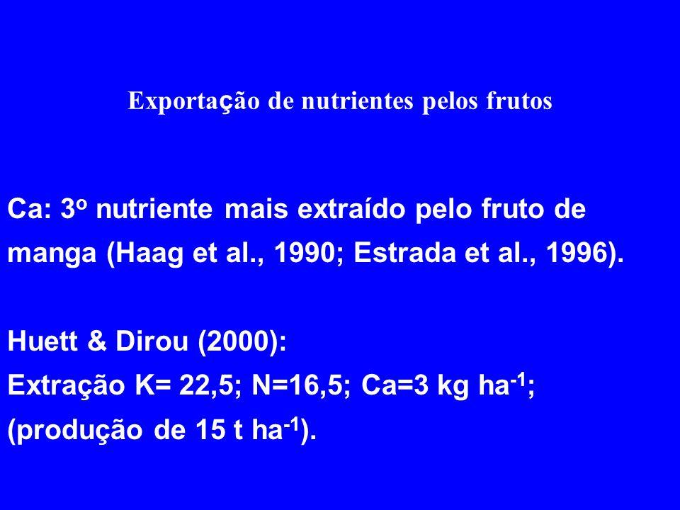 Exporta ç ão de nutrientes pelos frutos Ca: 3 o nutriente mais extraído pelo fruto de manga (Haag et al., 1990; Estrada et al., 1996). Huett & Dirou (