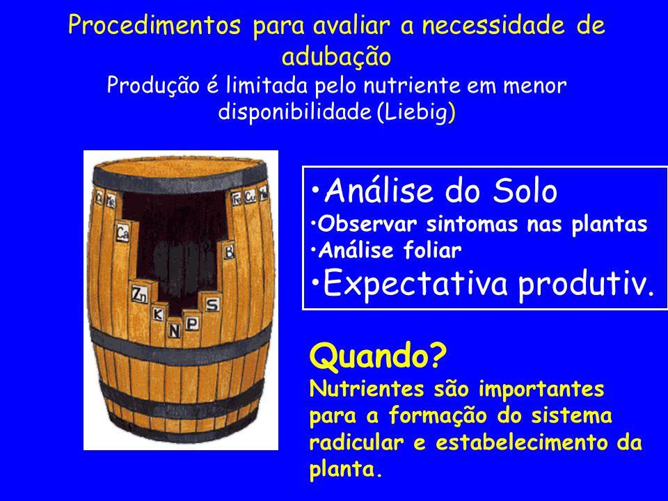 Procedimentos para avaliar a necessidade de adubação Produção é limitada pelo nutriente em menor disponibilidade (Liebig) Análise do Solo Observar sin