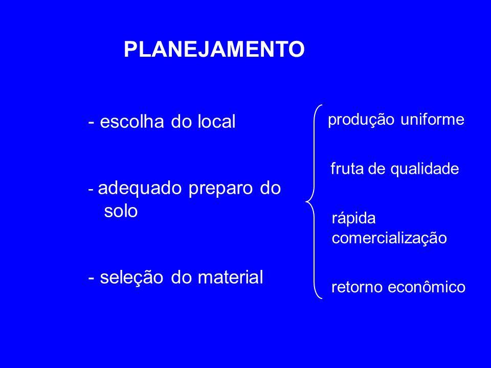 PLANEJAMENTO - escolha do local - adequado preparo do solo - seleção do material produção uniforme fruta de qualidade rápida comercialização retorno e