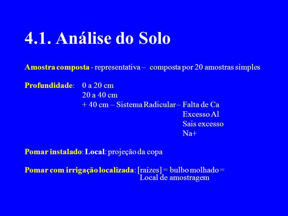 4.1. Análise do Solo Amostra composta - representativa – composta por 20 amostras simples Profundidade : 0 a 20 cm 20 a 40 cm + 40 cm – Sistema Radicu