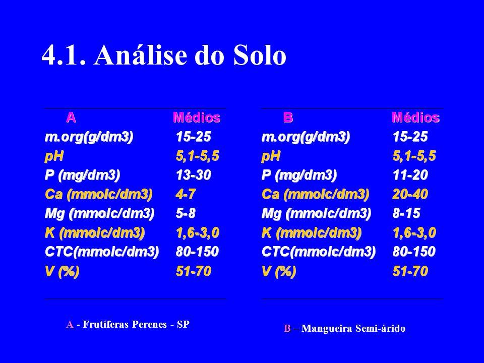 4.1. Análise do Solo A A - Frutíferas Perenes - SP B B – Mangueira Semi-árido