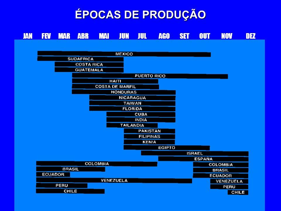 ÉPOCAS DE PRODUÇÃO JAN FEV MAR ABR MAI JUN JUL AGO SET OUT NOV DEZ