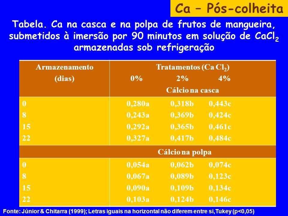 Tabela. Ca na casca e na polpa de frutos de mangueira, submetidos à imersão por 90 minutos em solução de CaCl 2 armazenadas sob refrigeração Ca – Pós-