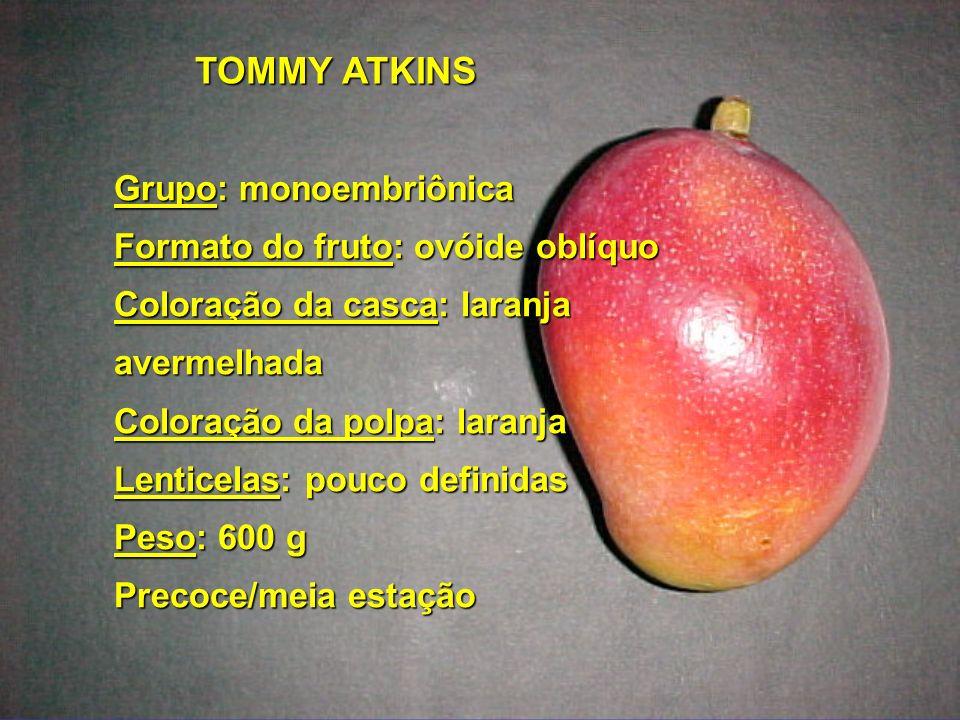 TOMMY ATKINS Grupo: monoembriônica Formato do fruto: ovóide oblíquo Coloração da casca: laranja avermelhada Coloração da polpa: laranja Lenticelas: po